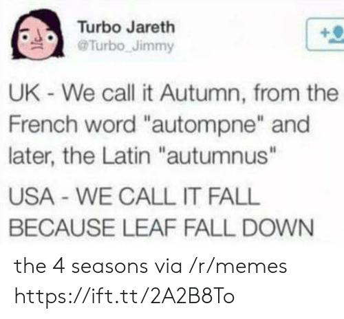 """fall down: Turbo Jareth  @Turbo Jimmy  UK - We call it Autumn, from the  French word """"autompne"""" and  later, the Latin """"autumnus""""  USA WE CALL IT FALL  BECAUSE LEAF FALL DOWN the 4 seasons via /r/memes https://ift.tt/2A2B8To"""