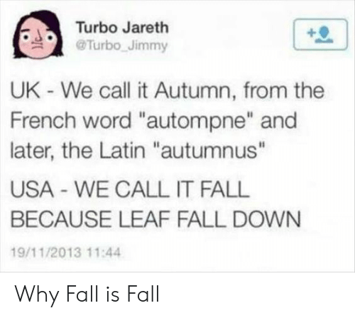 """fall down: Turbo Jareth  @Turbo Jimmy  UK - We call it Autumn, from the  French word """"autompne"""" and  later, the Latin """"autumnus""""  USA WE CALL IT FALL  BECAUSE LEAF FALL DOWN  19/11/2013 11:4 Why Fall is Fall"""