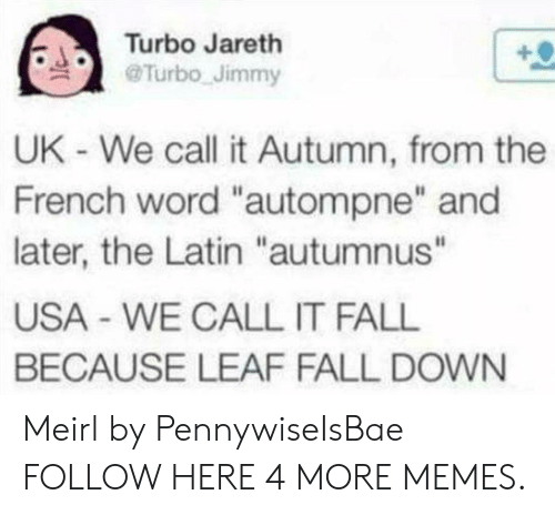 """fall down: Turbo Jareth  @Turbo-Jimmy  .  UK - We call it Autumn, from the  French word """"autompne"""" and  later, the Latin """"autumnus""""  USA - WE CALL IT FALL  BECAUSE LEAF FALL DOWN Meirl by PennywiseIsBae FOLLOW HERE 4 MORE MEMES."""