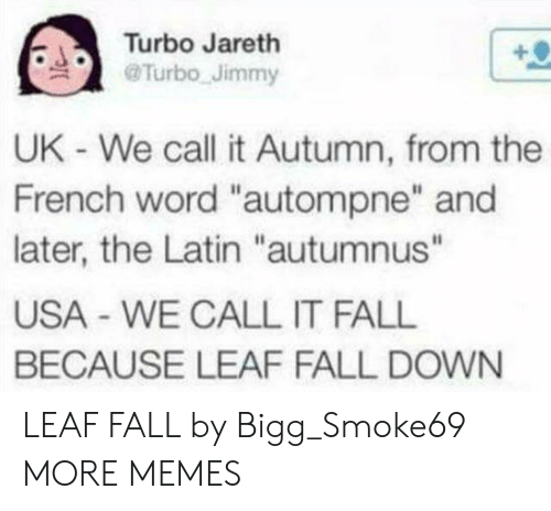 """fall down: Turbo Jareth  Turbo Jimmy  UK - We call it Autumn, from the  French word """"autompne"""" and  later, the Latin """"autumnus""""  USA WE CALL IT FALL  BECAUSE LEAF FALL DOWN LEAF FALL by Bigg_Smoke69 MORE MEMES"""