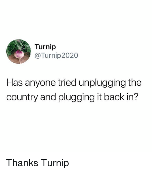Plugging: Turnip  @Turnip2020  Has anyone tried unplugging the  country and plugging it back in? Thanks Turnip