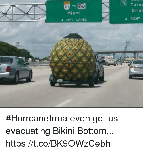 Bottoming: Turnp  Orlar  874  TO 826  Miami  3 LEFT LANES  3 RIGHT #HurrcaneIrma even got us evacuating Bikini Bottom... https://t.co/BK9OWzCebh