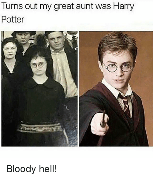 Harry Potter, Relatable, and Hell: Turns out my great aunt was Harry  Potter Bloody hell!
