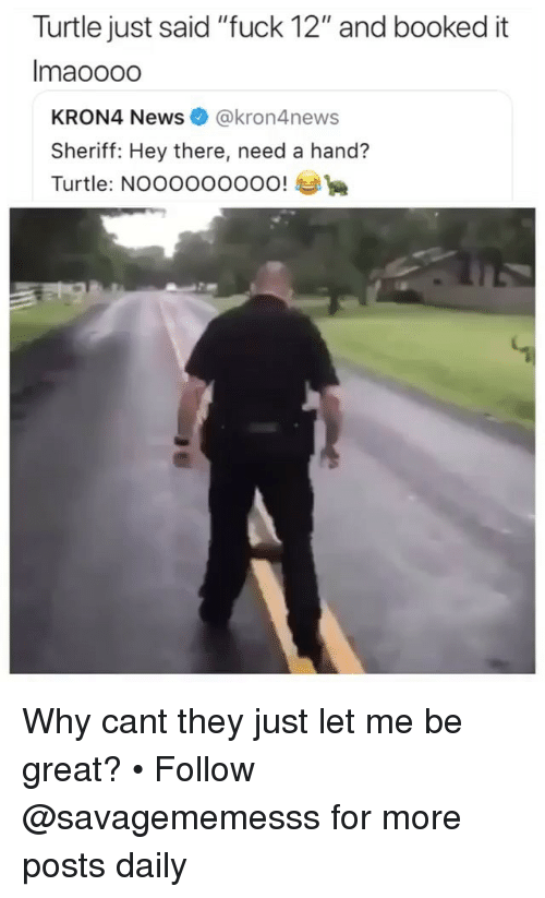 "Memes, News, and Fuck: Turtle just said ""fuck 12"" and booked it  Imaoooo  KRON4 News@kron4news  Sheriff: Hey there, need a hand?  Turtle: NOOOOOOOOO! Why cant they just let me be great? • Follow @savagememesss for more posts daily"