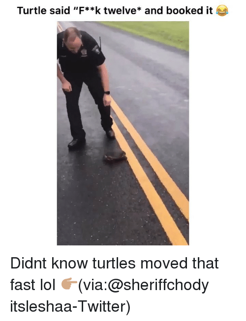 "Funny, Lol, and Twitter: Turtle said ""F**k twelve* and booked it Didnt know turtles moved that fast lol 👉🏽(via:@sheriffchody itsleshaa-Twitter)"