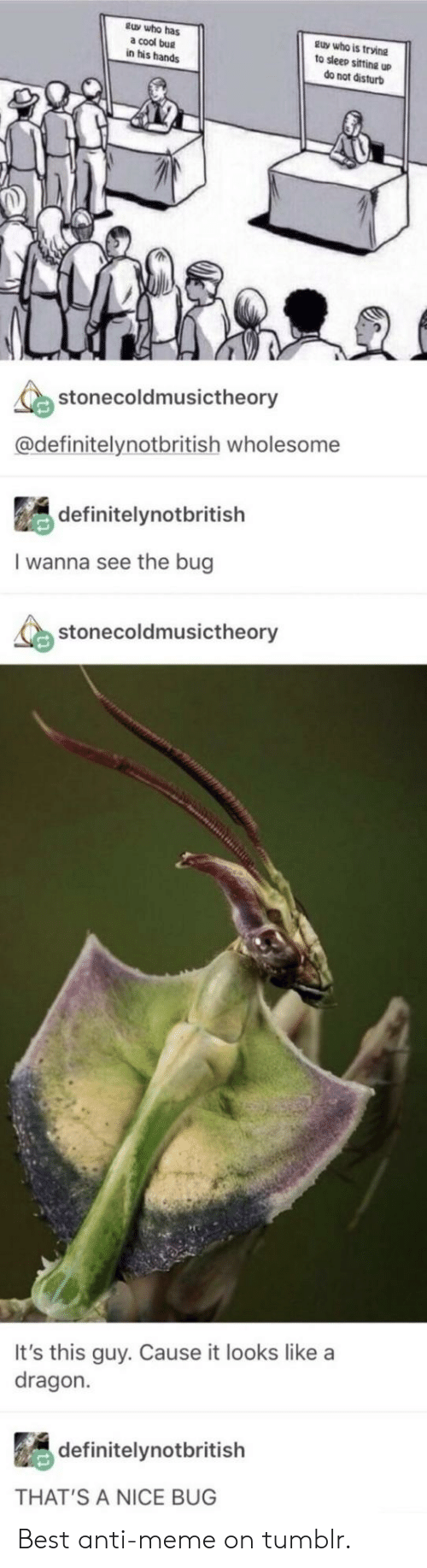 Thats A Nice: tuy who has  a cool bug  in his hands  guy who is trvine  to sleep sifting up  do not disturb  stonecoldmusictheory  @definitelynotbritish wholesome  definitelynotbritish  I wanna see the bug  stonecoldmusictheory  It's this guy. Cause it looks like a  dragon.  definitelynotbritish  THAT'S A NICE BUG Best anti-meme on tumblr.