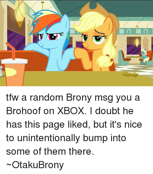 brony essay How to explore brony culture you've heard of the fandom the internet rage that left millions in disbelief, and continues to puzzle those not familiar with the community.