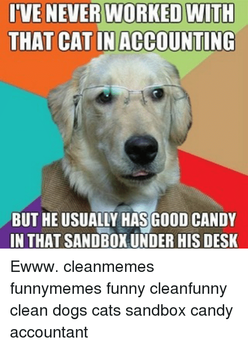 Candy, Dogs, and Memes: TVENEVER WORKED NITH  THAT CAT IN ACCOUNTING  BUT HE USUALLY HAS GOOD CANDY  IN THAT SANDBOX UNDER HIS DESK Ewww. cleanmemes funnymemes funny cleanfunny clean dogs cats sandbox candy accountant