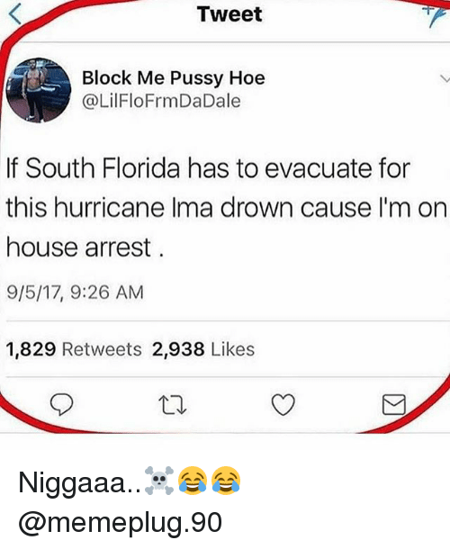 Hoe, Memes, and Pussy: Tweet  Block Me Pussy Hoe  @LilFloFrmDaDale  If South Florida has to evacuate for  this hurricane Ima drown cause I'm on  house arrest  9/5/17, 9:26 AM  1,829 Retweets 2,938 Likes Niggaaa..☠😂😂 @memeplug.90