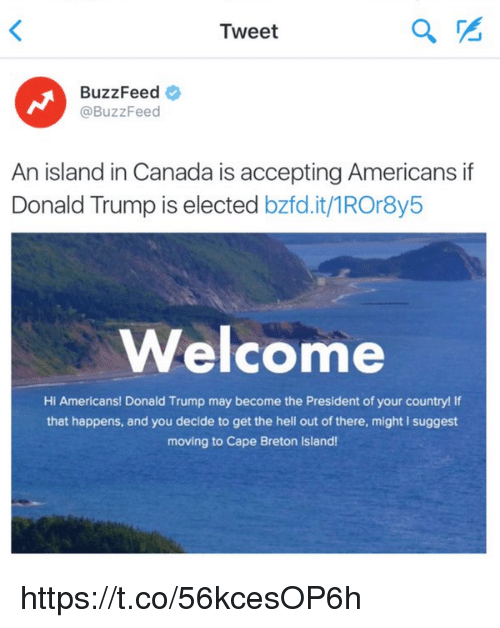 Girl Memes: Tweet  BuzzFeed  BuzzFeed  An island in Canada is accepting Americans if  Donald Trump is elected  bzfd.it/1ROr8y5  Welcome  Hi Americans! Donald Trump may become the President of your country! If  that happens, and you decide to get the hell out of there, might l suggest  moving to Cape Breton lsland! https://t.co/56kcesOP6h