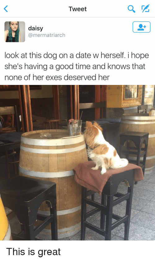 Dating, Dogs, and Funny: Tweet  daisy  mermatriarch  look at this dog on a date w herself. i hope  she's having a good time and knows that  none of her exes deserved her This is great
