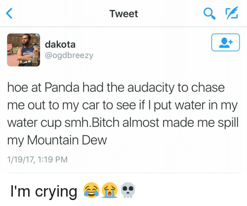 Funny, Mountain Dew, and Panda: Tweet  dakota  hoe at Panda had the audacity to chase  me out to my car to see if put water in my  water cup smh. Bitch almost made me spill  my Mountain DeW  1/19/17, 1:19 PM I'm crying 😂😭💀