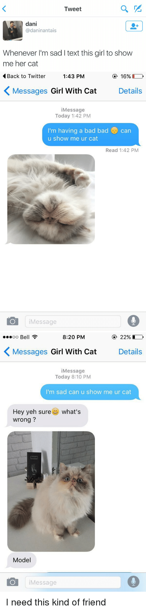girl with cat: Tweet  dani  @dani nantais  Whenever I'm sad l text this girl to show  me her cat   Back to Twitter  1:43 PM  16%  K Messages Girl With Cat  Details  i Message  Today 1:42 PM  I'm having a bad bad Can  u show me ur cat  Read 1:42 PM  Message   8:20 PM  22%  oo Be  K Messages  Girl With Cat  Details  i Message  Today 8:10 PM  I'm sad can u show me ur cat  Hey yeh sure  es what's  wrong?  Model  Message I need this kind of friend