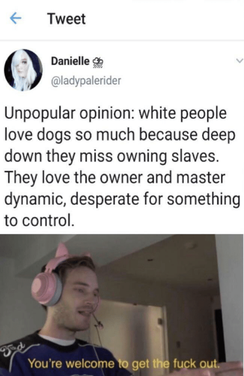 danielle: Tweet  Danielle  @ladypalerider  Unpopular opinion: white people  love dogs so much because deep  down they miss owning slaves.  They love the owner and master  dynamic, desperate for something  to control  You're welcome to get the fuck out.