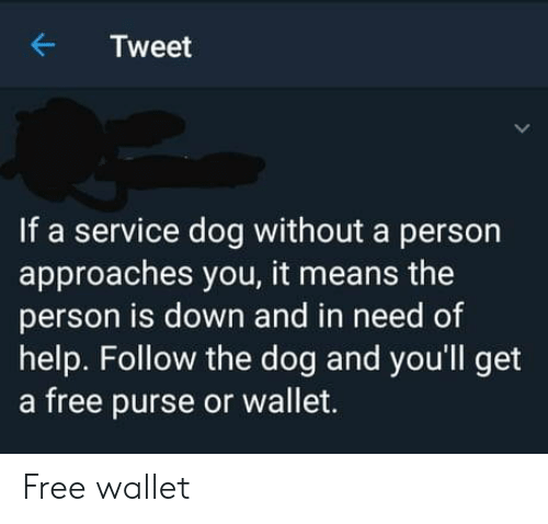 In Need Of: Tweet  If a service dog without a person  approaches you, it means the  person is down and in need of  help. Follow the dog and you'll get  a free purse or wallet. Free wallet