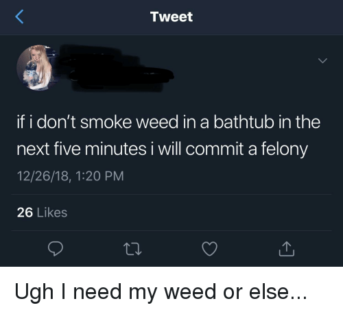 I Dont Smoke Weed: Tweet  if i don't smoke weed in a bathtub in the  next five minutes i will commit a felony  12/26/18, 1:20 PM  26 Likes  t0.