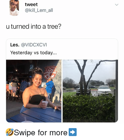 Memes, Today, and Tree: tweet  @kill_Lem_all  turned into a tree?  Les. @VIDCXCVI  Yesterday vs today... 🤣Swipe for more➡️