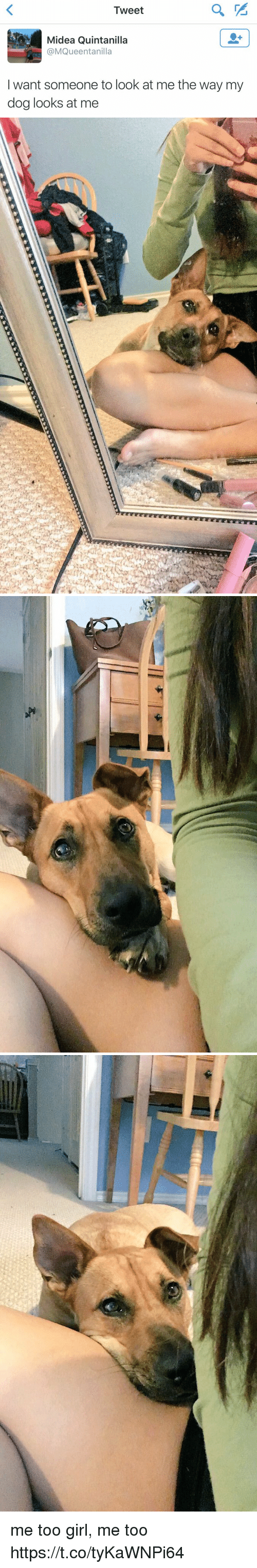 Girl, Girl Memes, and Dog: Tweet  Midea Quintanilla  @MQueentanilla  want someone to look at me the way my  dog looks at me   C: me too girl, me too https://t.co/tyKaWNPi64