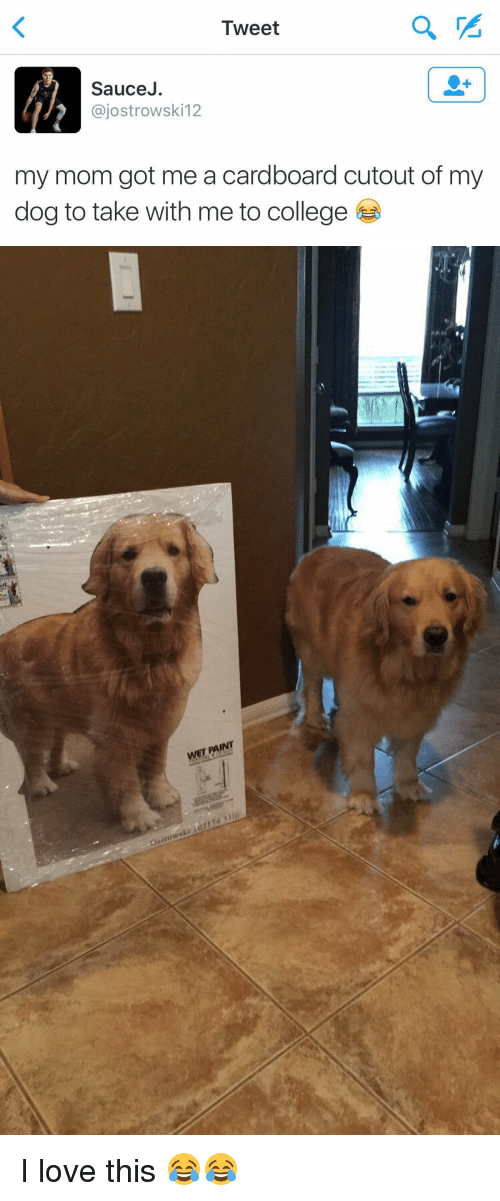 Sauced: Tweet  Sauce  ajostrowski 12  my mom got me a cardboard cutout of my  dog to take with me to college   WET FAINT I love this 😂😂