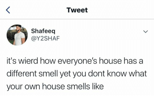 Smell, House, and How: Tweet  Shafeeq  @Y2SHAF  it's wierd how everyone's house has a  different smell yet you dont know what  your own house smells like