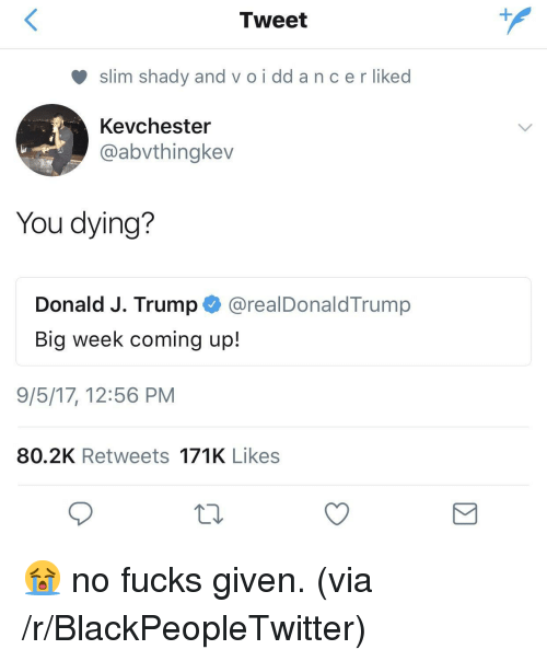 Slim Shady: Tweet  slim shady and v o i dd a nc er liked  Kevchester  @abvthingkev  You dying?  Donald J. Trump @realDonaldTrump  Big week coming up!  9/5/17, 12:56 PM  80.2K Retweets 171K Likes <p>😭 no fucks given. (via /r/BlackPeopleTwitter)</p>
