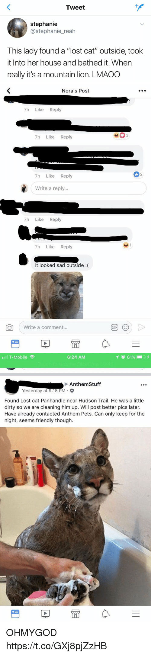 """Gif, T-Mobile, and Lost: Tweet  stephanie  @stephanie_reah  This lady found a """"lost cat"""" outside, took  it Into her house and bathed it. When  really it's a mountain lion. LMAOO   Nora's Post  7h Like Reply  7h Like Reply  2  7h Like Reply  Write a reply...  7h Like Reply  7h Like Reply  It looked sad outside :(  。  ( Write a comment.  GIF)  (じ   T-Mobile  6:24 AM  Anthem Stuff  Yesterday at 9:18 PM .  Found Lost cat Panhandle near Hudson Trail. He was a little  dirty so we are cleaning him up. Will post better pics later.  Have already contacted Anthem Pets. Can only keep for the  night, seems friendly though.  rt OHMYGOD https://t.co/GXj8pjZzHB"""