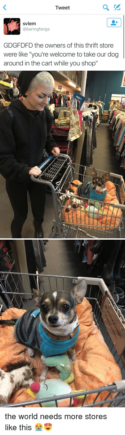 "Youre Welcom: Tweet  svlem  @baring fangs  GDGFDFD the owners of this thrift store  were like ""you're welcome to take our dog  around in the cart while you shop""   EI   NO NaN the world needs more stores like this 😭😍"