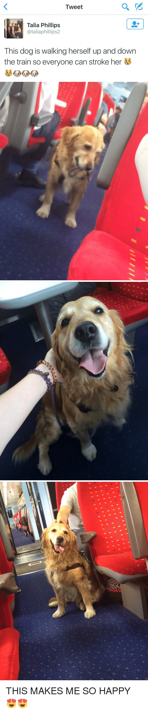 Funny: Tweet  Talia Phillips  ataliaphillips2  This dog is walking herself up and down  the train so everyone can stroke her   1111目!   u I THIS MAKES ME SO HAPPY 😍😍