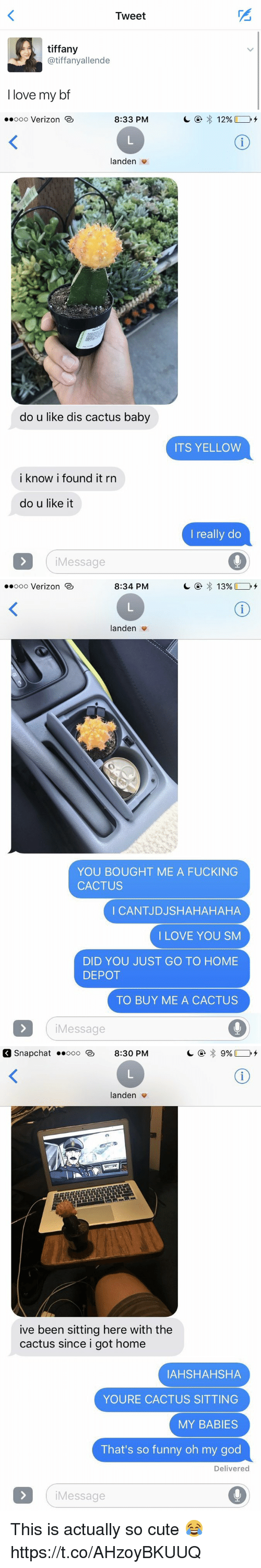 Cute, Fucking, and Funny: Tweet  tiffany  atiffanyallende  I love my bf   8:33 PM  ooooo Verizon  anden  do u like dis cactus baby  i know i found it rn  do u like it  Message  ITS YELLOW  really do   8:34 PM  13%  ooooo Verizon  landen  YOU BOUGHT ME A FUCKING  CACTUS  I CANTJDJSHAHAHAHA  I LOVE YOU SM  DID YOU JUST GO TO HOME  DEPOT  TO BUY ME A CACTUS  Message   Snap Chat Ooo 8:30 PM  anden  ive been sitting here with the  cactus since i got home  IAHSHAHSHA  YOURE CACTUS SITTING  MY BABIES  That's so funny oh my god  Delivered  Message This is actually so cute 😂 https://t.co/AHzoyBKUUQ