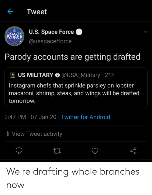 Sprinkle: Tweet  U.S. Space Force  SPACE  FORCE  @usspacefforce  Parody accounts are getting drafted  US MILITARY O @USA_Military · 21h  BAINT  Instagram chefs that sprinkle parsley on lobster,  macaroni, shrimp, steak, and wings will be drafted  tomorrow.  2:47 PM · 07 Jan 20 · Twitter for Android  ili View Tweet activity We're drafting whole branches now