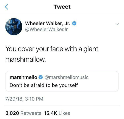 be yourself: Tweet  Wheeler Walker, Jr.  @WheelerWalkerJr  You cover your face with a giant  marshmallow.  marshmello  @marshmellomusic  Don't be afraid to be yourself  7/29/18, 3:10 PM  3,020 Retweets 15.4K Likes