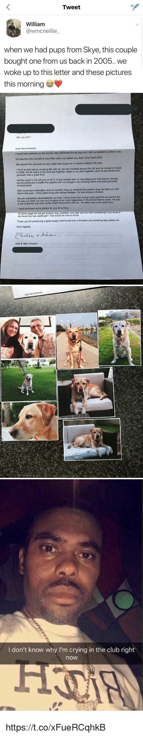Club, Crying, and Drinking: Tweet  William  @wmcneillie  when we had pups from Skye, this couple  bought one from us back in 2005.. we  woke up to this letter and these pictures  this morning   6th July 2017  Dear Mrs McNeillie  I found your address on the kennel club certificate for my dog and I felt compelled to write to you  He was the only one left of your litter when we visited you; born 22nd April 2005.  We named him Jos and we very sadly had to put him to sleep in March this year  think he has had an amazing life with us. He has travelled around the UK and he moved to Dubai  in 2008. We all swam in the Gulf sea together, swam in our pool together, went to pet shows and  generally had a great time.  He flew back to the UK end of 2013. A few months later he was diagnosed with kidney disease  but he continued to baffle the experts with no change in his drinking habits and tests generally  showed good.  With continued medication and six monthly tests he remained the perfect dog. He held out until  March this year - three years living with kidney disease - he was always a trooper.  We are completely devastated by our loss. I never knew that losing a dog could be so painful but  he was our child, our boy and he gave us so much happiness in the almost twelve years. He was  a real character and went pretty much everywhere with us. He really was a very good boy.  I have enclosed some photos for you of our boy  At some stage we will get another dog, probably next year and we were wondering if you know i  his blood line has continued? That would be nice to know.  Thank you for producing a great puppy that turned into a fantastic and amazing dog called Jos.  Kind regards,  Julie & Alan Cousins   Dear Mrs McNeillie   I don't know why I'm crying in the club right  now https://t.co/xFueRCqhkB