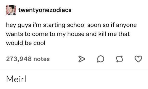 hey guys: twentyonezodiacs  hey guys i'm starting school soon so if anyone  wants to come to my house and kill me that  would be cool  273,948 notes Meirl