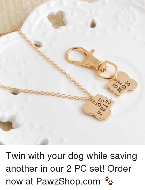 Memes, 🤖, and Another: Twin with your dog while saving another in our 2 PC set! Order now at PawzShop.com 🐾