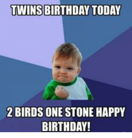 Funny Birthday Meme For Twins : Twins birthday today birds one stonehappy