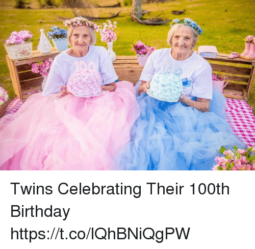25+ Best Memes About Twins