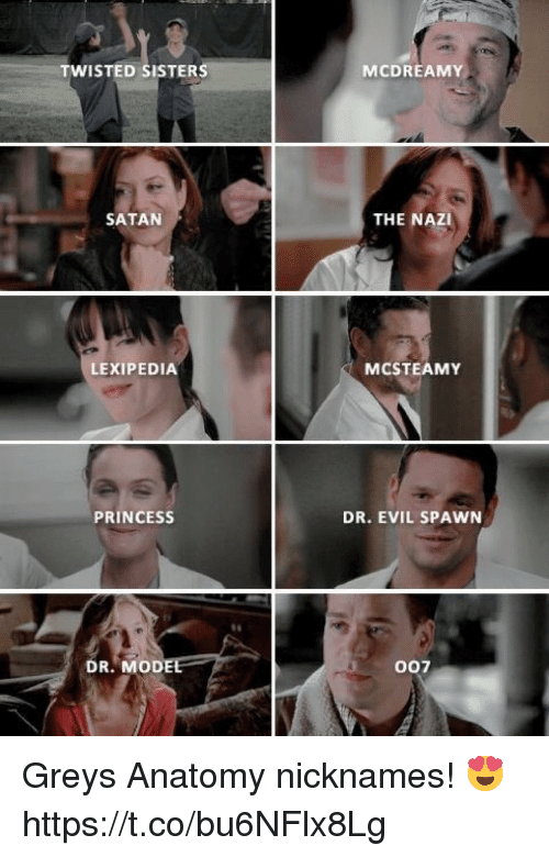 nicknames: TWISTED SISTERS  MCDREAMY  SATAN  THE NAZI  LEXIPEDIA  MCSTEAMY  PRINCESSs  DR. EVIL SPAWN  DR. MODE  007 Greys Anatomy nicknames! 😍 https://t.co/bu6NFlx8Lg