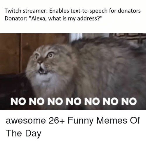 """Funny, Memes, and Twitch: Twitch streamer: Enables text-to-speech for donators  Donator: """"Alexa, what is my address?""""  NO NO NO NO NO NO NO awesome 26+ Funny Memes Of The Day"""