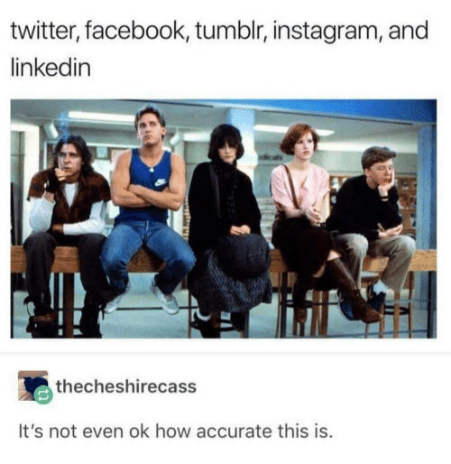 Tumblr Instagram: twitter, facebook, tumblr, instagram, and  linkedin  thecheshirecass  It's not even ok how accurate this is