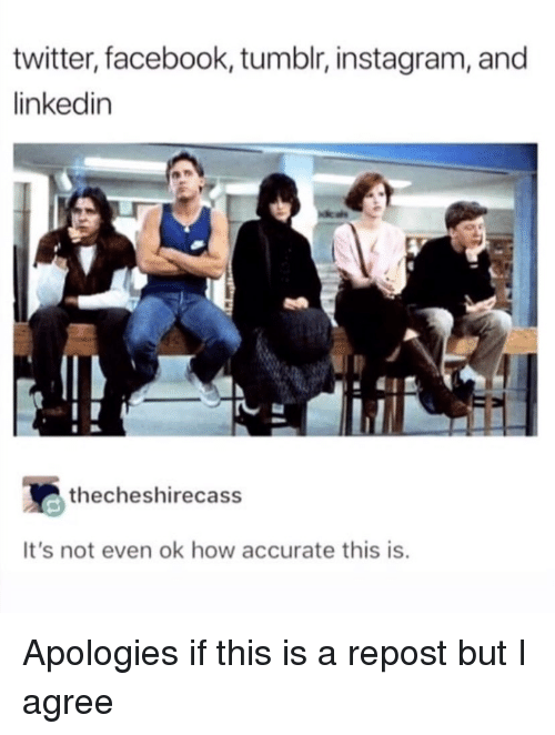 Tumblr Instagram: twitter, facebook, tumblr, instagram, and  linkedin  thecheshirecass  It's not even ok how accurate this is Apologies if this is a repost but I agree