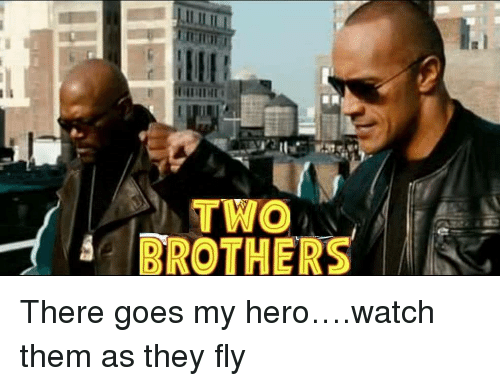 there goes my hero: TWO  BROTHERS <p>There goes my hero&hellip;.watch them as they fly</p>