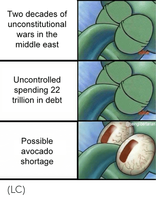 middle east: Two decades of  unconstitutional  wars in the  middle east  Uncontrolled  spending 22  trillion in debt  Possible  avocado  shortage (LC)