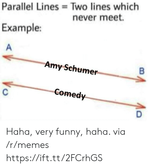 Amy Schumer: Two lines which  never meet.  Parallel Lines  Example:  Amy Schumer  Comedy Haha, very funny, haha. via /r/memes https://ift.tt/2FCrhGS