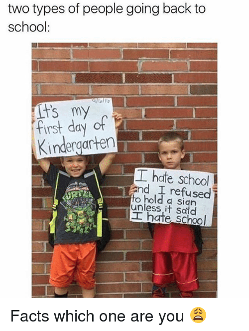 Facts, Memes, and School: two types of people going back to  school:  fist day of  Kindergarten  工hate school  and refused  to hold a sian  unless it Said  工hate school Facts which one are you 😩