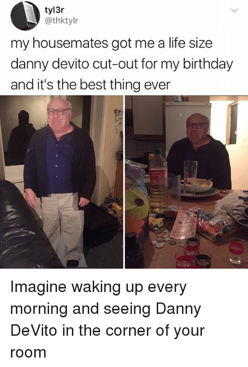 Birthday, Life, and Memes: tyl3r  @thktylr  my housemates got me a life size  danny devito cut-out for my birthday  and it's the best thing ever Imagine waking up every morning and seeing Danny DeVito in the corner of your room