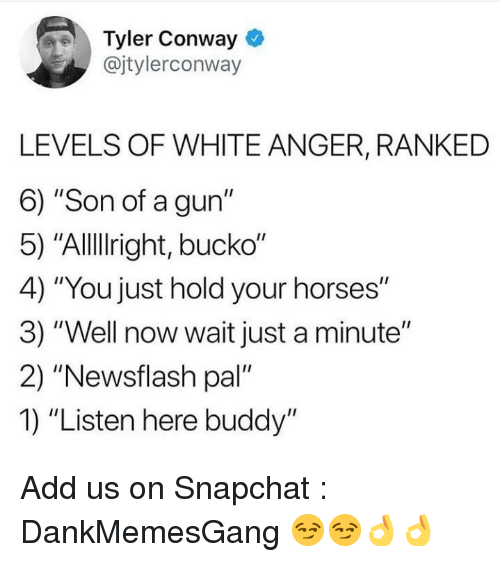 """Conway, Horses, and Memes: Tyler Conway  @jtylerconway  LEVELS OF WHITE ANGER, RANKED  6) """"Son of a gun""""  5) """"Allllright, bucko""""  4) """"You just hold your horses""""  3) """"Well now wait just a minute""""  2) """"Newsflash pal'  1) """"Listen here buddy"""" Add us on Snapchat : DankMemesGang 😏😏👌👌"""