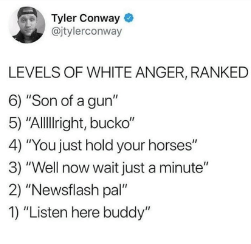 "Conway, Horses, and White: Tyler Conway  @jtylerconway  LEVELS OF WHITE ANGER, RANKED  6) ""Son of a gun""  5) ""Allllright, bucko""  4) ""You just hold your horses""  3) ""Well now wait just a minute""  2) ""Newsflash pal""  1) ""Listen here buddy"""