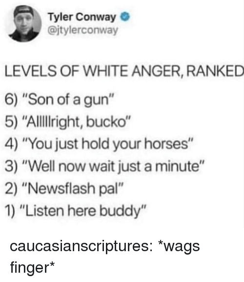 """Conway: Tyler Conway  @jtylerconway  LEVELS OF WHITE ANGER, RANKED  6) """"Son of a gun""""  5) """"Allillright, bucko""""  4) """"You just hold your horses""""  3) """"Well now wait just a minute""""  2) """"Newsflash pal""""  1) """"Listen here buddy'"""" caucasianscriptures:  *wags finger*"""