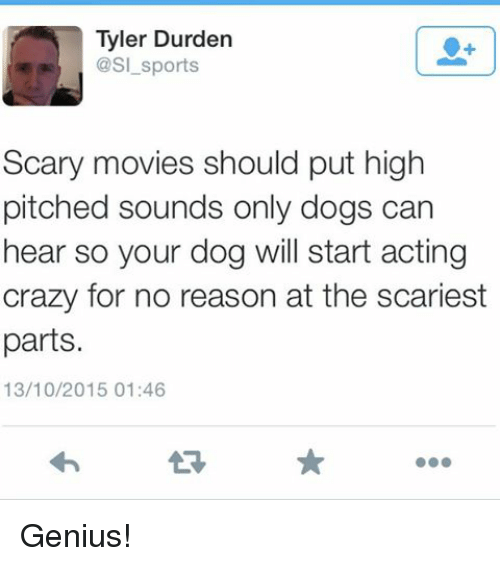Tyler Durden: Tyler Durden  @sl sports  Scary movies should put high  pitched sounds only dogs can  hear so your dog will start acting  crazy for no reason at the scariest  parts.  13/10/2015 01:46 Genius!