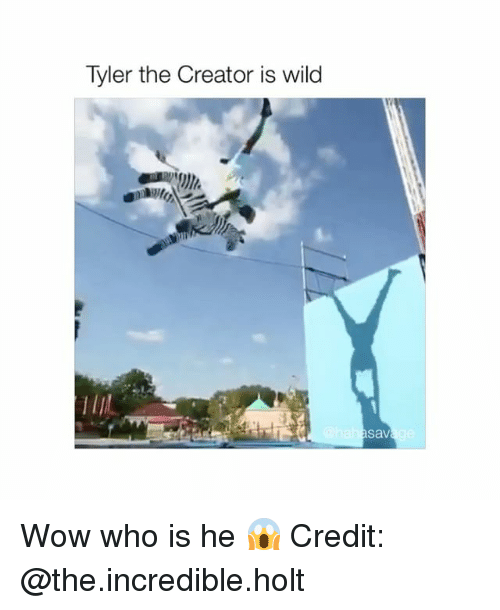 Tyler the Creator, Wow, and Wild: Tyler the Creator is wild  sav Wow who is he 😱 Credit: @the.incredible.holt